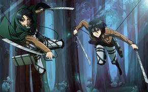 Picture anime, art, Mikasa, Shingeki no Kyojin, Attack of the titans, The invasion of the giants, …