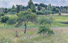 Picture landscape, picture, Camille Pissarro, Apple tree at Eragny