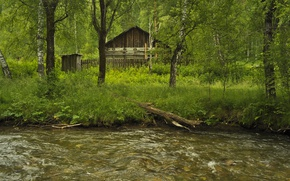 Picture Greens, Grass, Forest, House, Grass, River