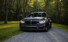 Picture BMW, Bavaria, Gray, F82