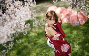 Wallpaper sweetheart, Sakura, Asian, flowering