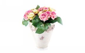 Wallpaper bouquet, roses, white background, vase