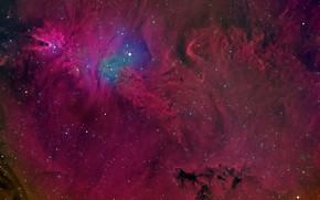 Picture space, stars, Cone Nebula