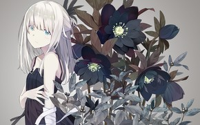 Picture look, flowers, anime, girl