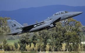 Picture F-15E, Strike Eagle, McDonnell Douglas