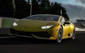 Picture Lamborghini, Turn 10 Studios, Force 7