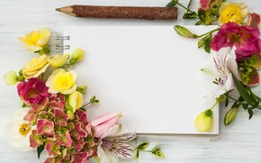 Picture flowers, wood, flowers, beautiful, composition, frame, floral