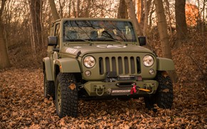 Wallpaper autumn, forest, trees, foliage, bumper, 4x4, Jeep, winch, the soft top, Geiger-Willys Limited Edition