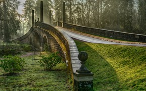 Picture greens, grass, the sun, trees, bridge, fog, Park, dawn, moss, morning, Scotland, the bushes, Ayrshire, ...