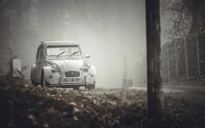 Wallpaper machine, street, fog