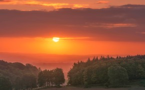 Picture forest, clouds, trees, sunset, England, haze, Leicestershire
