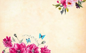 Picture butterfly, flowers, Background, Texture