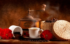 Picture flowers, coffee, Cup, red, drink, grain, coffee grinder