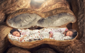 Wallpaper Sleep, sleep, Little girls, girls, sleep, peanuts, Creative, children, creative, shell