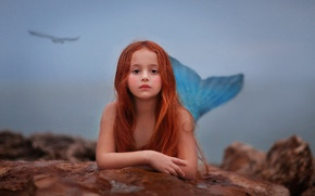 Picture stones, bird, mermaid, girl, tail, red, the little mermaid