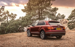 Wallpaper bentayga, crossover, Bentley, Bentayga, Bentley