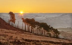 Picture trees, sunset, mountains, England, slope, horizon