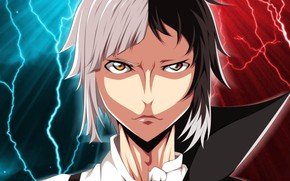 Picture game, anime, asian, manga, japanese, oriental, asiatic, Bungou Stray Dogs