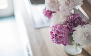 Picture bouquet, bokeh, peonies, Peonie
