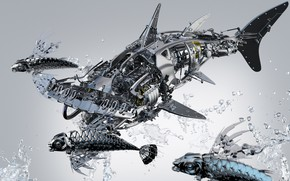 Picture fish, squirt, metal, details, the hammerhead shark