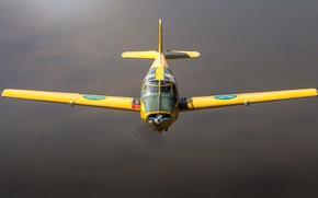 Picture quadruple, training aircraft, Can 91 Safir