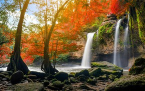 Picture autumn, forest, water, nature, river, waterfall, forest, cascade, river, nature, beautiful, autumn, waterfall