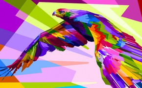 Picture bird, bright, bird of prey