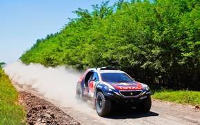 Picture Sand, 2008, Dust, Sport, Speed, Race, Peugeot, Lights, Red Bull, Rally, Dakar, Dakar, Rally, Sport, …