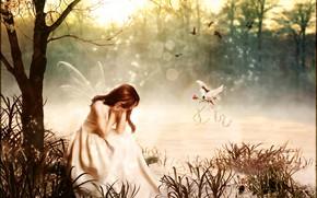 Picture rose, dove, Digital Art, brandrificus, breakdown, magic fairy