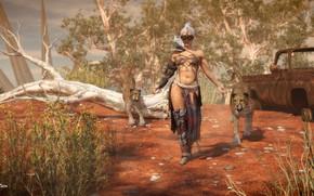 Picture cats, vegetation, the skeleton, Rune, Geneva, Queen of the Desert II