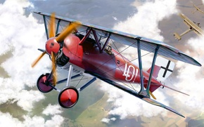 Picture Biplane, D.III, Siemens-Zuckertort, the German company, single-seat fighter, Siemens-Schuckert