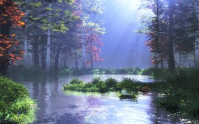 Picture forest, nature, vegetation, pond, mountain pond