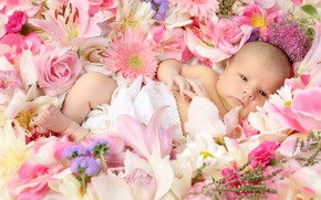 Picture flowers, girl, baby
