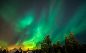 Picture winter, stars, trees, home, beauty, Northern lights