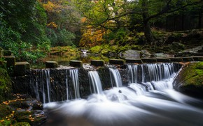 Picture autumn, forest, trees, nature, waterfall, stream
