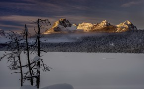 Picture winter, mountains, morning
