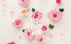 Wallpaper the inscription, roses, happy, holiday, petals, Mothers Day