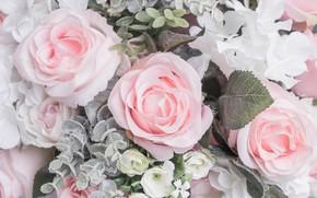 Wallpaper flowers, roses, pastel colors, pastel, pastel colors, pale colors