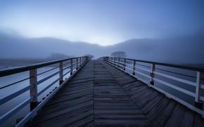 Picture bridge, fog, lake, morning