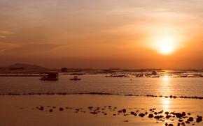 Picture sand, sea, wave, beach, summer, the sky, the sun, sunset, shore, summer, golden, twilight, beach, …