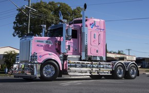 Picture Pink, Kenworth, T909