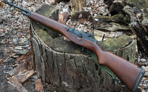 Picture Springfield, A semi-automatic rifle, Armory M1A