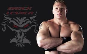 Picture pose, fighter, Beast, wrestler, tattoo, WWE, UFC, Beast, fighter, RAW, Fighter, MMA, Brock Lesnar, Brock …