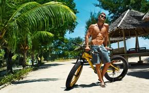 Picture palm trees, bike, glasses, guy, trees, beach, sand, shorts, greens, slates, the sun, torso