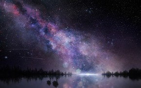 Picture the sky, birds, night, nature, the milky way