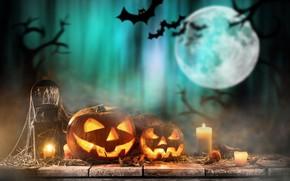 Wallpaper pumpkin, holiday, candles, haluin