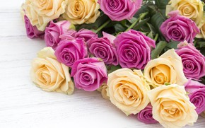 Picture flowers, roses, bouquet, yellow, pink, buds, pink, flowers, beautiful, roses