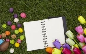 Picture grass, flowers, eggs, spring, colorful, Easter, tulips, wood, flowers, tulips, spring, Easter, eggs, decoration, Happy, ...
