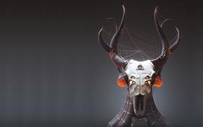 Picture skull, web, art, horns, totem, Prey, Mark Van Haitsma