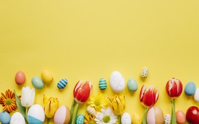 Picture eggs, spring, Easter, tulips, yellow background